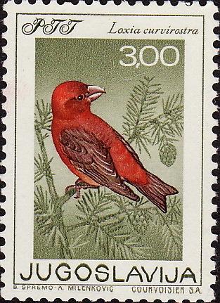 jugoslavija_bird3.jpg
